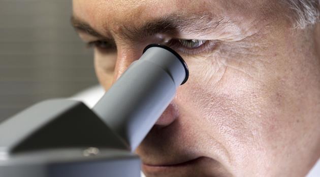 Цена анализа кала на дисбактериоз