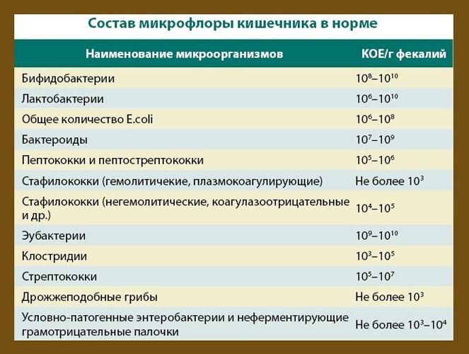 Нормальный состав микрофлоры кишечника