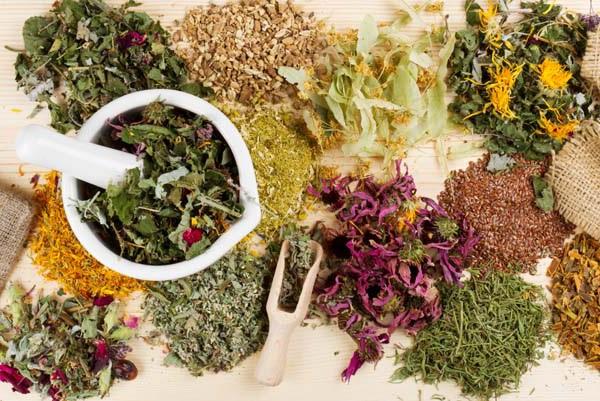 Сборы и травы при панкреатите