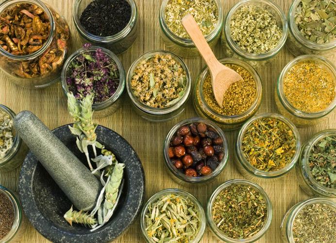 Травы для лечения панкреатита