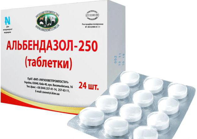 Альбендазол успешно применяется для лечения стронгилоидоза
