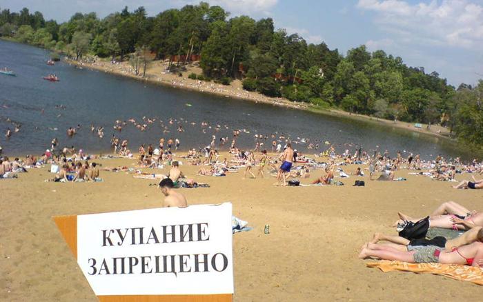 Зараженные паразитами водоемы после проверки запрещаются для купания