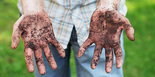 Грязь на руках — наиболее опасный источник паразитарной инфекции