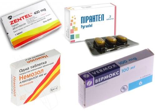 таблетки против глистов для человека лечение