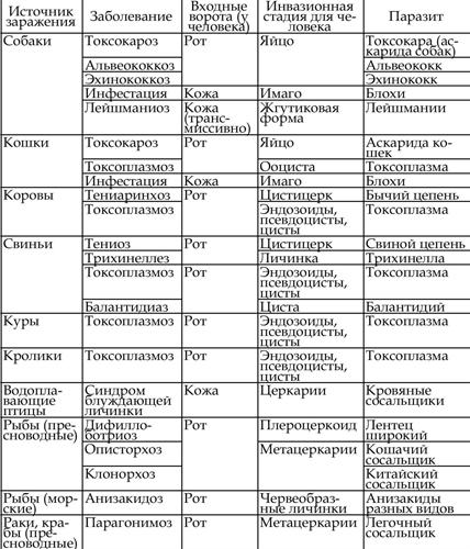 таблетки для паразитов в организме человека