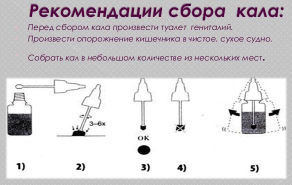 Как правильно сдавать кал на глистов? sbor_kala_dlya_analiza_na_glistov