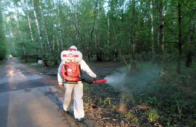Обработка инсектицидами леса для уничтожения клещей