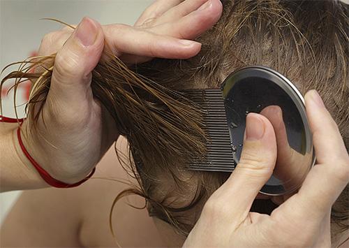 После мытья головы Дегтярным мылом следует провести механическую чистку волос гребнем