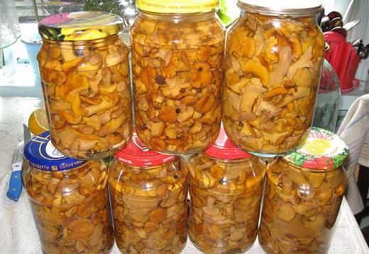 грибы лисички от паразитов рецепт