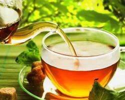 чай от паразитов малышевой отзывы