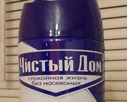 chistiy_dom