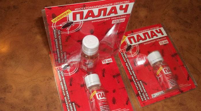 Инсектицид от клопов Палач