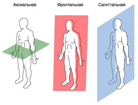 Рентгенография при диагностике сколиоза выполняется во всех проекциях