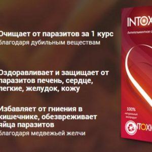 Intoxic Screenshot_393-700x425-300x300