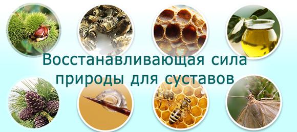 Крем Здоров для суставов zdorov-2