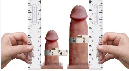 фото идеального размера члена-зз1