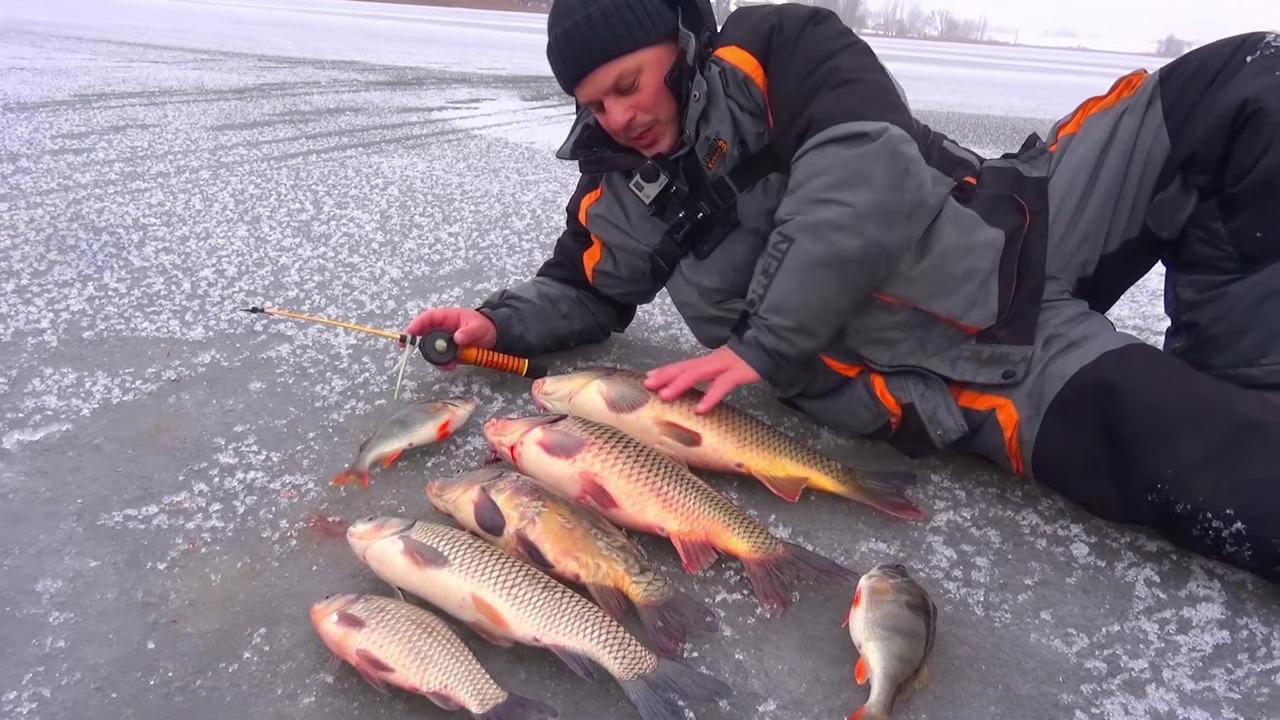 fish xxl активатор клева купить в челябинске