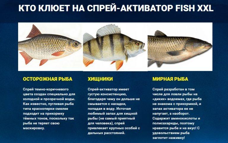 Fish XXL - активатор клева fish-xxl-sprej-aktivator-dlya-zimnej-rybalki-768x482
